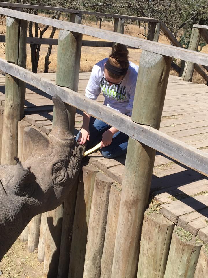 feeding-a-rhino