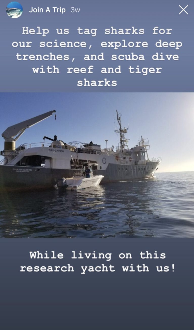 NatGeo, Shark Research, & Me